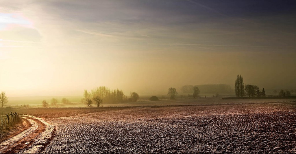 À l'aube même un paysage hivernal de campagne à quelques kilomètres de la maison prend une toute autre tournure