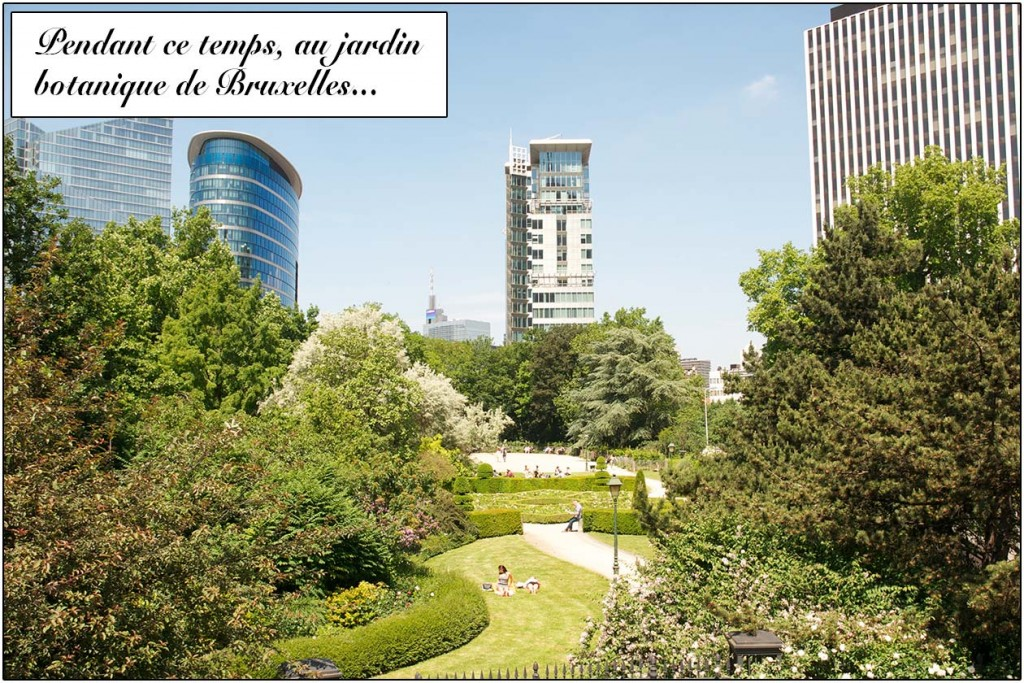 bruxelles-bd-jardin-botanique-2