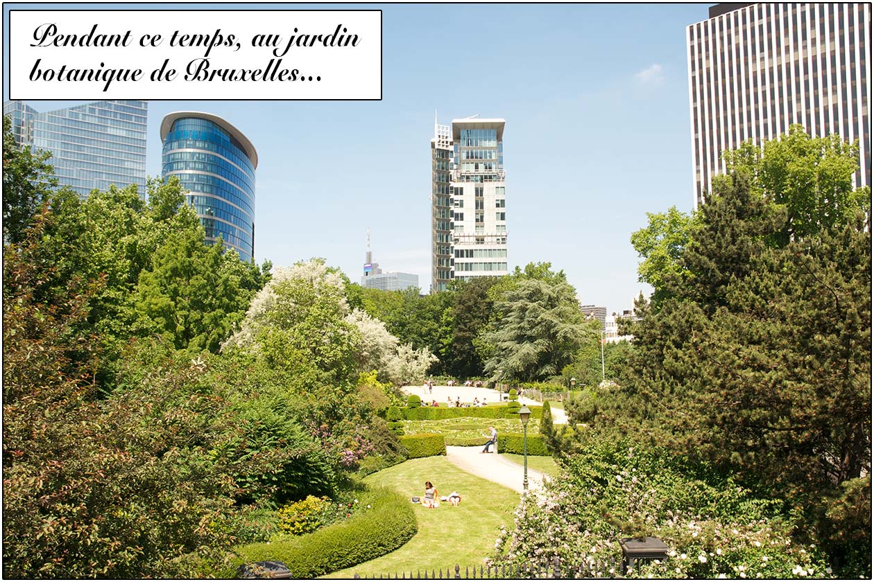 Visiter le mus e de la bd bruxelles vojagado for Bd du jardin botanique 50 bruxelles