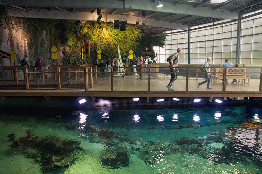 Nausicaa l 39 aquarium g ant de boulogne sur mer - Les jardins de la matelote boulogne sur mer ...