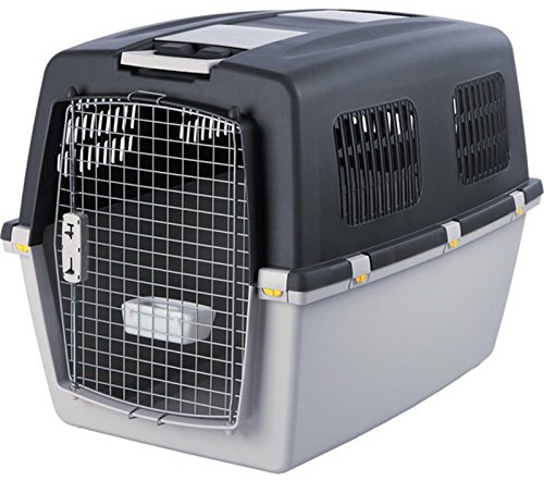 cage-transport-animaux