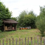 musee-plein-air-lille-ruche
