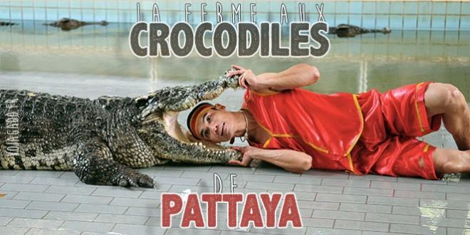 Homme qui met sa tête dans la gueule d'un crocodile, à Pattaya (une)