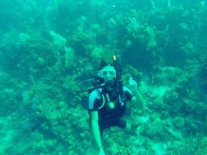 Stefenn et Jeanne plongent avec bouteille dans les eaux turquoises des côtes du Honduras, en Amérique Larine