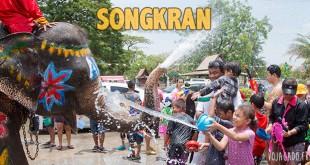 Fille qui projette de l'eau sur un éléphant